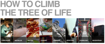 Bild und Link: HOW TO CLIMB THE TREE OF LIFE